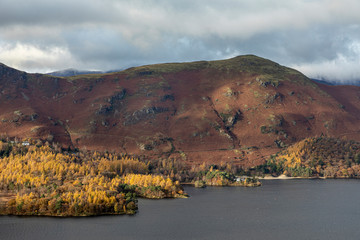 Catbells from Surprise View