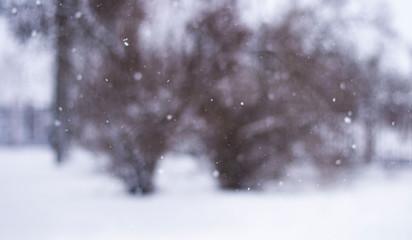 snoeflakes blizzard in Russia