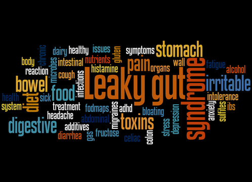 Leaky gut syndrome word cloud concept 2