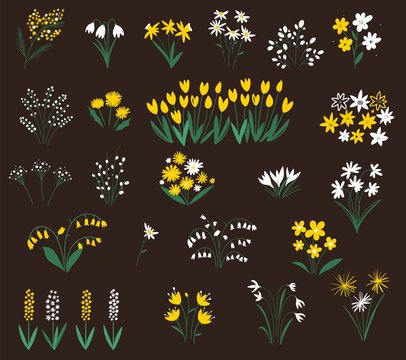 Set of summer flowers silhouettes. Spring wildflowers. Flower icon collection - vector illustration.