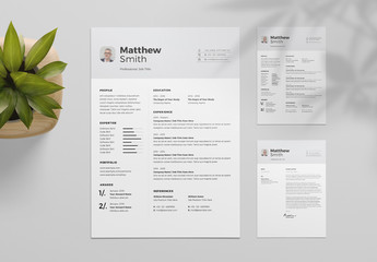 Resume Layout with Light Gray Header and Accents