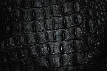 Photo sur Aluminium Crocodile Black crocodile skin with relief. Texture.