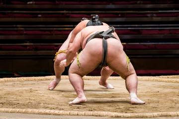 日本の相撲 土俵上での戦いの様子