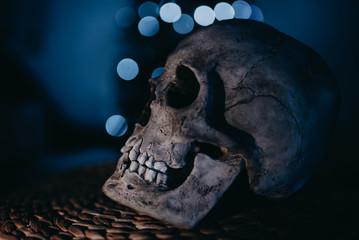 Human skull decoration with reflection