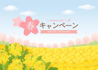 菜の花畑と桜と青空の広告背景素材