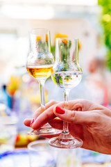 Two grappa glasses with brown and light grappa at a garden party in summer
