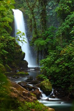 Vertical shot of the majestic La Paz waterfall in the middle of a lush forest, Cinchona Costa Rica