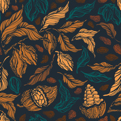 Cacao seamless pattern. Vector vintage background