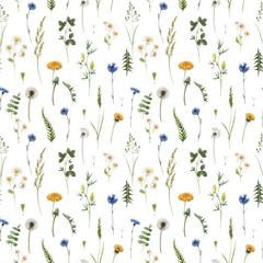 Fototapeta Beautiful vector floral summer seamless pattern with watercolor hand drawn field wild flowers. Stock illustration. obraz