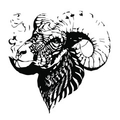 Zodiac sign. Vector hand drawn illustration