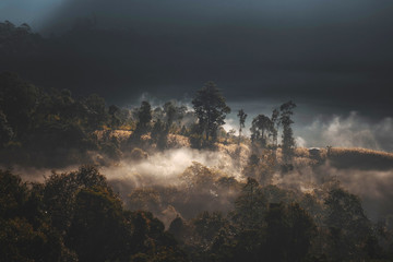 Foto op Plexiglas Cappuccino The morning mist Thailand mountains covered with fog sunrise time