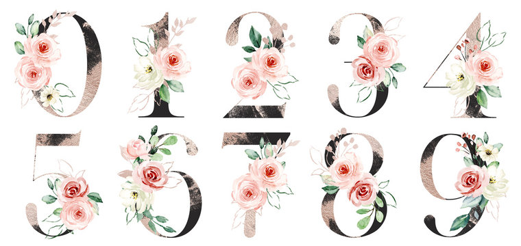 Number set with watercolor flowers roses and leaves. Numbers perfectly for wedding invitations, greeting card, logo, poster and other floral design. Hand painting. Isolated on white background.