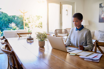 Young African American female entrepreneur working in her living room