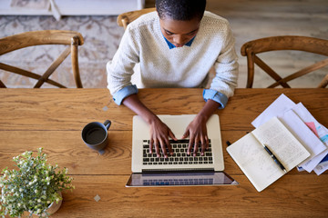 Focused young African American female entrepreneur working from her home Fotomurales
