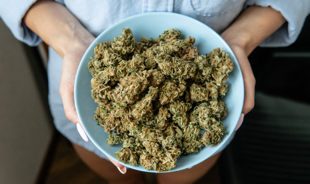 A lot of cannabis medical buds before use lying in a blue plate.