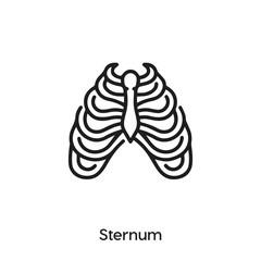 sternum icon vector . sternum sign symbol