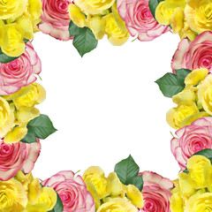Wall Mural - Beautiful floral pattern of yellow begonia and pink roses. Isolated