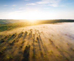 Wall Mural - Attractive top view on rural landscape at dawn.