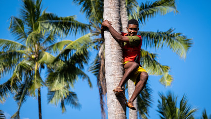 Poster Zanzibar Young boy climbing a palm tree and doing acrobatics in Zanzibar, Tanzania