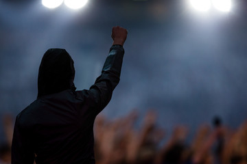 rear view of man raising fist in crowd