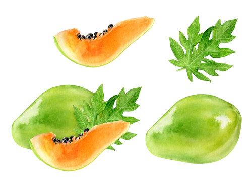Papaya watercolor illustration isolated on white background
