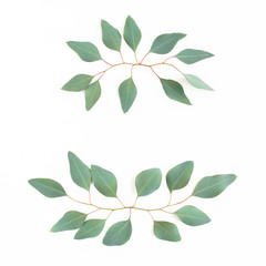 Wall Mural - Wreath frame made of branches eucalyptus isolated on white background. lay flat, top view