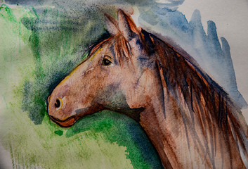 a picture of horse - aquarell picture