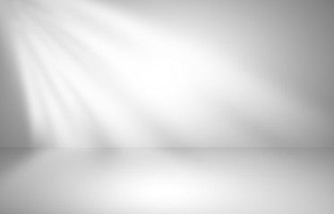 Abstract gray studio gradient wall and floor background in empty room with light