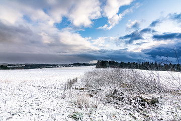 winter landscape with frozen meadow and blue sky