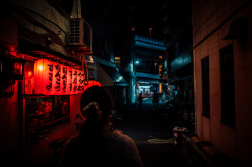 Rear View Of Woman Walking On Alley By Illuminated Japanese Lanterns In City At Night