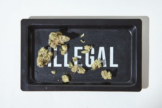 Cannabis Flower on ILLEGAL rolling tray