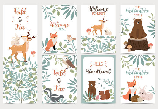 Collection of woodland background set with bear,deer,skunk,fox.Editable vector illustration for website, invitation,postcard and sticker.Wording include the adventure begin