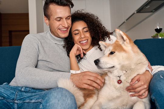 Romantic Date. Young multiethnic couple at home sitting on sofa playing with dog laughing cheerful