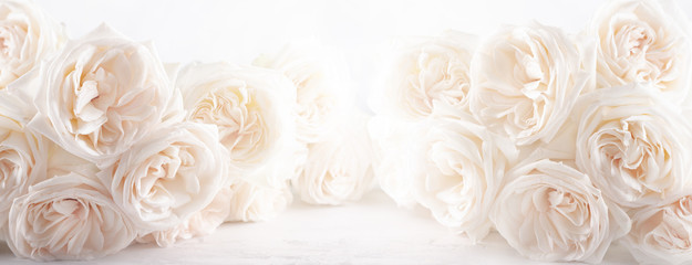 Background of beautiful white  roses flowers . Papier Peint