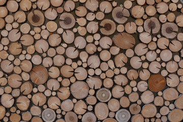 Door stickers Firewood texture texture pile of wood log sections