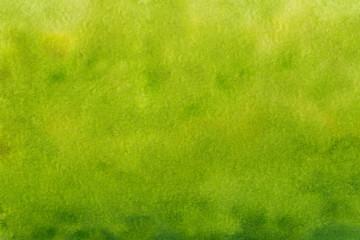 Foto auf Acrylglas Pistazie landscape green watercolor grass field with blur trees background,