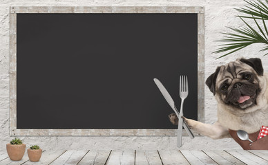 frolic pug puppy dog with leather apron and cutlery in diner, with blank menu board and wooden counter