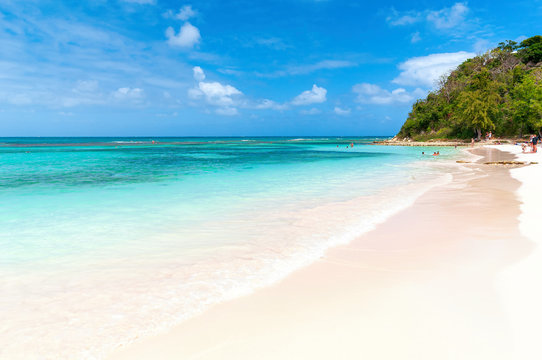 Long bay Atlantic coast - Caribbean tropical sea - Antigua and Barbuda.