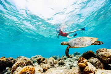 Girl snorkeling with sea turtle Wall mural