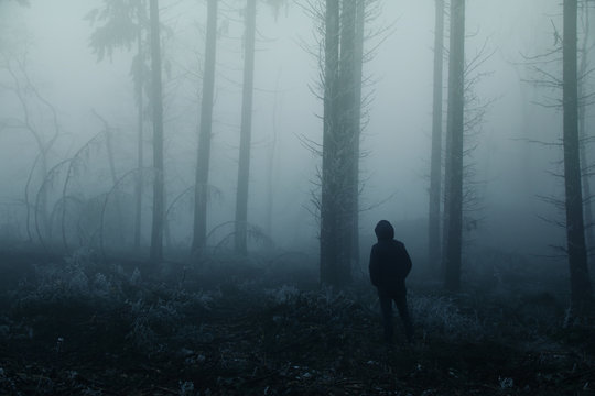 lonely man, a man stands between tree trunks on a blurry background of a foggy forest, mysterious mystical concept