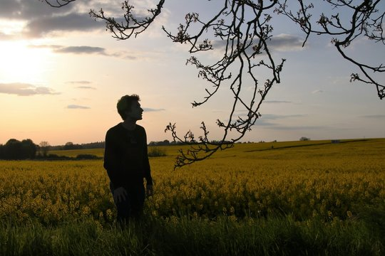 Man Standing Amidst Plants On Field Against Sky During Sunset