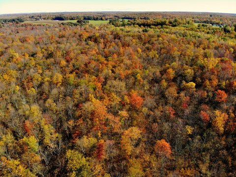 The aerial view of stunning fall foliage near Watertown, New York, U.S.A