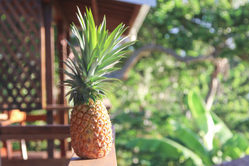 pineapple on wood railing