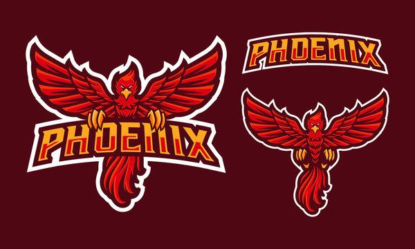 Phoenix mascot logo design for sport or e-sport logo isolated on dark background
