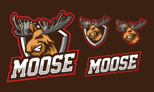 Moose mascot logo design for sport or e-sport logo isolated on dark background