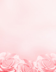 Keuken foto achterwand Roses Banner with three pink roses
