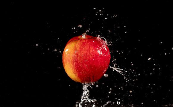 37 Best Apple Wallpaper Images Stock Photos Vectors Adobe Stock