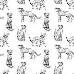 Vector seamless pattern with drawings of cheetahs.