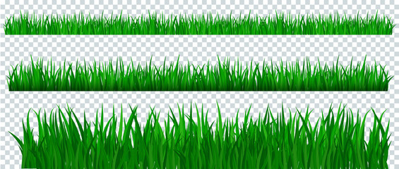 Poster Vert Green grass border on transparent background.