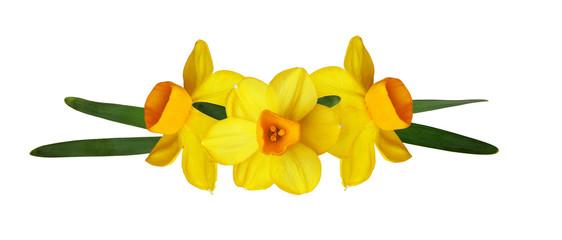 Papiers peints Narcisse Yellow narcissus flowers in a spring arrangement